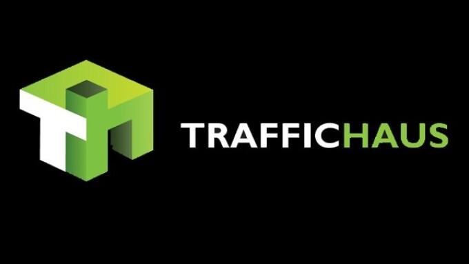 TrafficHaus Reports Traffic Surge Following Google's Panda 4.2 Update