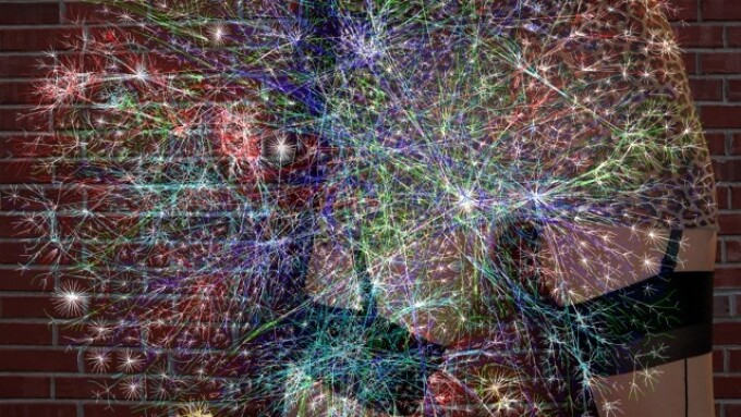 Curating the Visual Internet