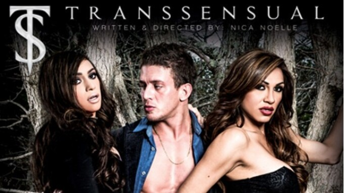 TransSensual Debuts 'TS Girls on Top'