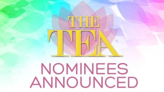Nominees Announced for 2016 Transgender Erotica Awards