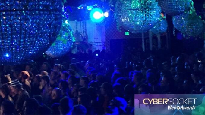 A Winning Night at the Cybersocket Web Awards