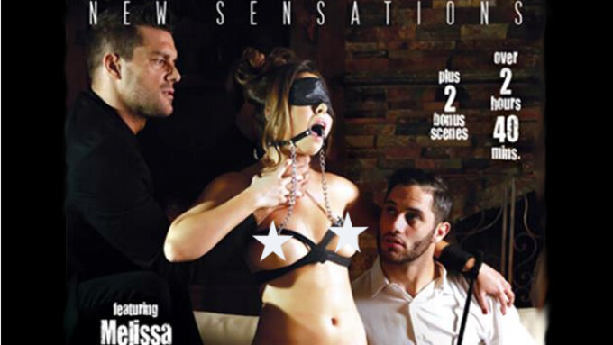 New Sensations Debuts 'What's Next? 2'