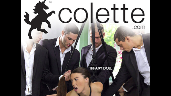 Adult Source Media, Colette Debut 'Gangbang and Orgies, Oh My'