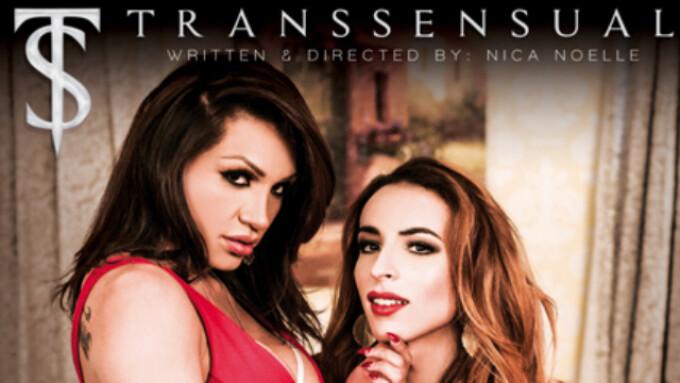 TransSensual Streets 'TS Lusty Latinas'
