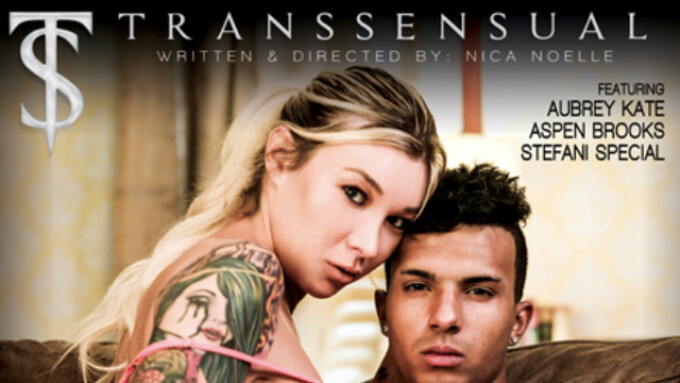 TransSensual Offers 'TS Beauties 2'