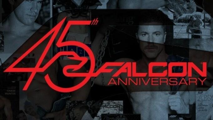 FalconStudios.com Gets Refreshed for 45th Anniversary