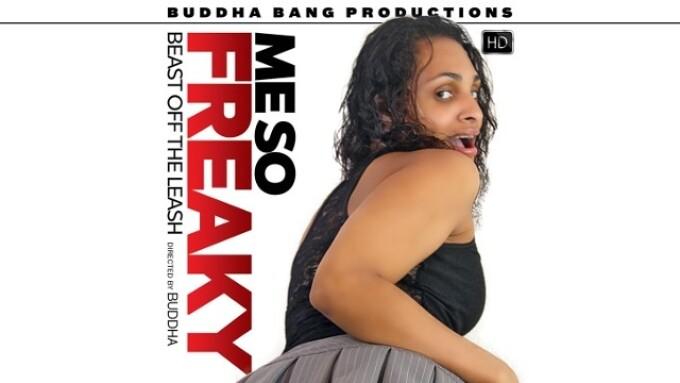 Pure Play, Buddha Bang Release 'Me So Freaky'