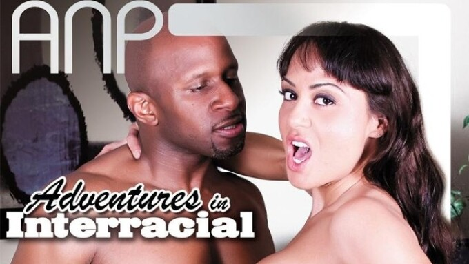 All Niche Releases 'Adventures in Interracial'