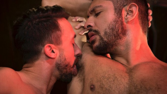 Falcon, Raging Stallion Release 'Trapped'