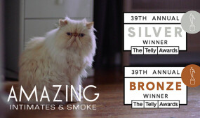 Amazing Stores Wins 2 Telly Awards for TV Commercial