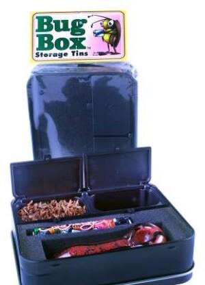 The Bug Box Ash-N-Stash