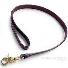 JT Signature Collection Leash