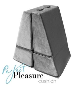 Perfect Pleasure Cushion