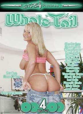Whale Tail 4 Pack