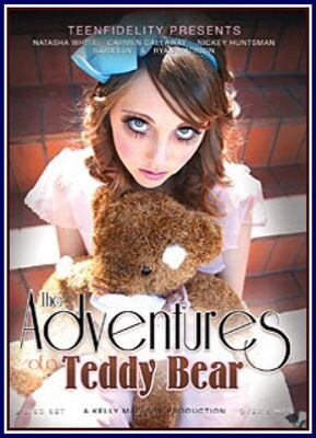 The Adventures of a Teddy Bear