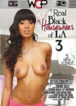 Real Black Housewives of LA 3