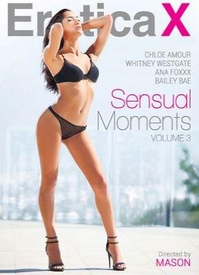 Sensual Moments 3