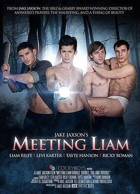 Meeting Liam