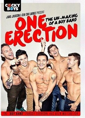 One Erection: The Un-Making of a Boy Band